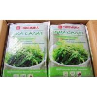 chuka salad wholesale