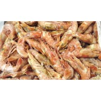 Argentinian Prawns, in shell, wholesale 21-30