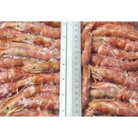 Argentinian Prawns, in shell, L3 - (31-40) pcs / kg wholesale