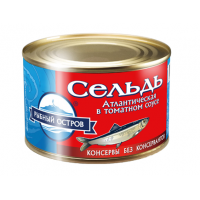 Atlantic herring in tomato sauce, wholesale