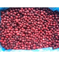 cranberries wholesale