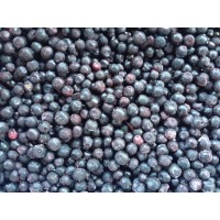 BLUEBERRY wholesale