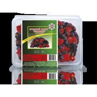 """Berry salad """"Winter"""" gross"""
